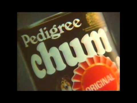 Is Pedigree Chum Good Dog Food