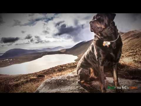 Ireland Through A Lens – Stair na hÉireann – HD