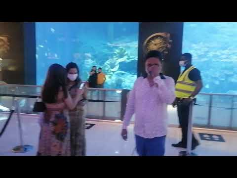 Dubai Mall aquarium and underwater fishing zoo place in Dubai