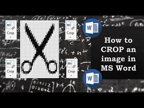How to Crop a Picture in Microsoft Word - in 60 SECONDS!!