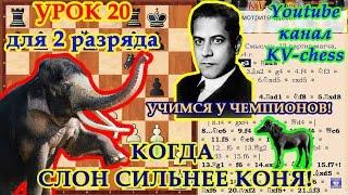 Шахматы - Когда слон сильнее коня - Урок 20 для 2 разряда.