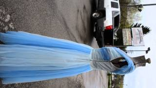 Vintage Blue Sheer Gown Prom Cocktail Party Evening Dress