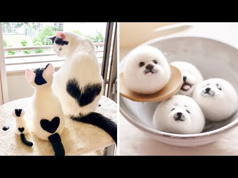 AWW Animals SOO Cute! Cute baby animals Videos Compilation cute moment of the animals #13