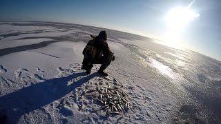 Найкраща рибалка на Корюшка Фінська затока , Північний берег