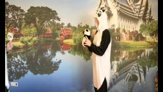 Пижама кигуруми kigurumi Панда карнавальный костюм домашний костюм(, 2014-11-24T06:28:18.000Z)