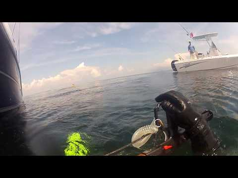 My Second Dive at Ocean Wind Tug Pensacola FL 9.4.17