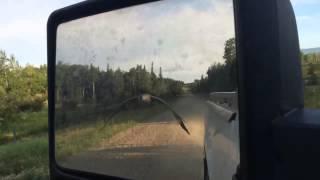 【1分~必見】別れが寂しい? 旅立つ車をガチョウが追いかけてきた!
