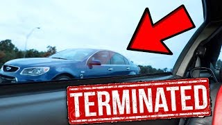 Chevy SS Stands No Chance Against the Terminator Cobra