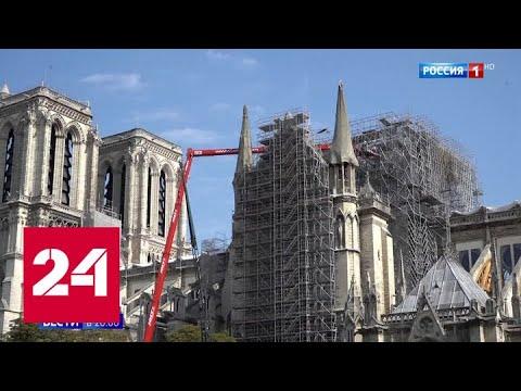 Во Франции требуют признать собор Нотр Дам ядовитым и накрыть его куполом - Россия 24