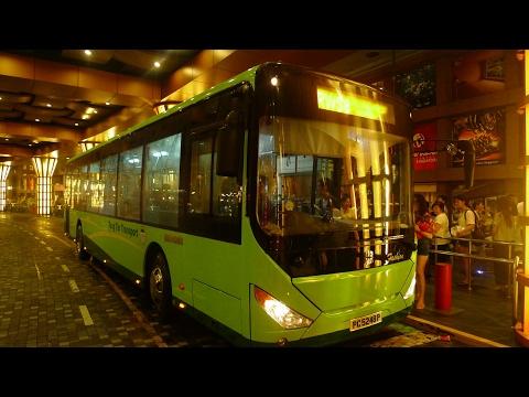 Resorts World Sentosa Bus Service 8, PA4948J