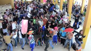 Harlem Shake Uni Celaya