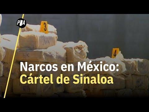 Cártel de Sinaloa: ¿cuál es el origen y peso de este cártel?