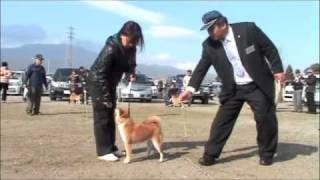 おはようございま~す! 平成23年2月27日撮影 雅の毬古号-湘南美雅荘...