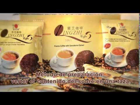 como tomar el cafe lingzhi para bajar de peso