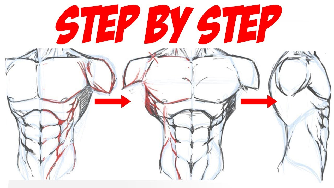 How To Draw The Male Torso For Comics Step By Step