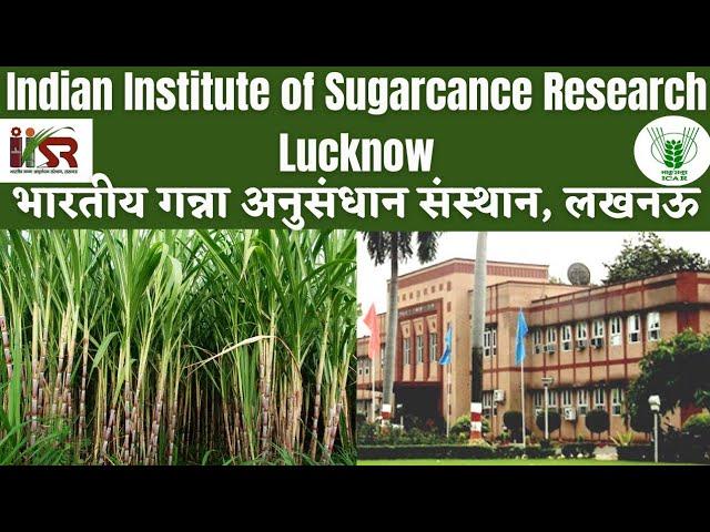 IISR, LUCKNOW || INDIAN INSTITUTE OF SUGARCANE RESEARCH, LUCKNOW || भारतीय गन्ना अनुसंधान संस्थान - YouTube