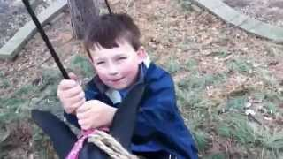 Hanging Up Horse Tire Swing In Tree