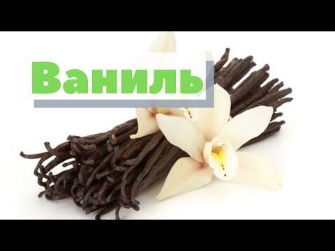 Как это сделано | Ваниль | How is harvesting vanilla