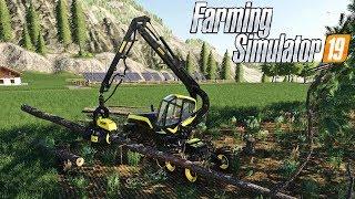 FARMING SIMULATOR 19 LIVE #137 - GLI ALBERI SONO PRONTI - GAMEPLAY ITA