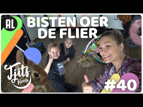 ALLE Jonge Konijnen Gaan Weg! // Tjits Vlog #40