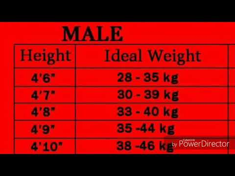 Perfect Weight Chart According To Height Youtube