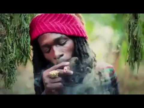marijuana song