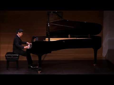 Harry Z - Ludwig van Beethoven: Piano Sonata No. 8 in C minor, Op 13, 1st Movement