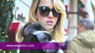 Fur Coats of Lady Fur