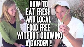 Eat Fresh & Local Food FREE without Growing a Garden