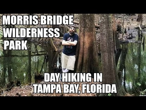 Day Hiking at Morris Bridge Wilderness Park - Tampa, Fl