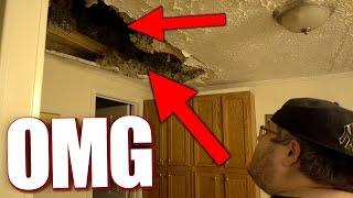 HIS ROOF IS CAVING IN!!