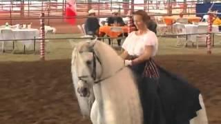 Андалузская лошадь Garrido и испанский танец Mylessa на шоу ANCCE