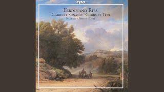 Clarinet Sonata, Op. 29: III. Adagio - Allegro non troppo