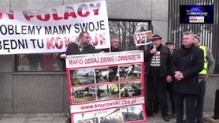 Ostre słowa pod Ambasada USA w Warszawie na proteście rolników o wołowinę