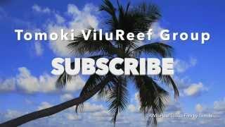 Tomoki ViluReef Group Introduction Video