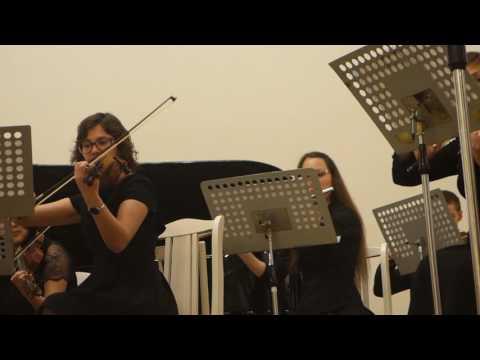 Молодёжный камерный оркестр Санкт-Петербургского государственного университета