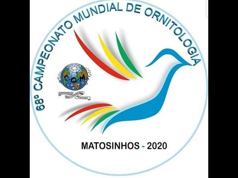 68° Campionato Mondiale di Ornitologia - Matosinhos Portogallo 2020