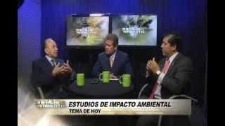 Debate sobre Estudios de Impacto Ambiental I