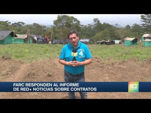 Farc responden al informe de RED+ Noticias sobre contratos