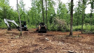 Forestry Mulching Table Rock Tea Company