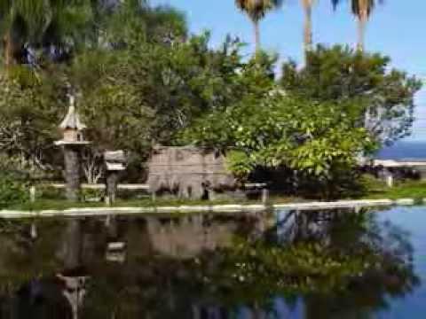 Jardin acuatico risco bello parque taoro puerto de for Jardin acuatico