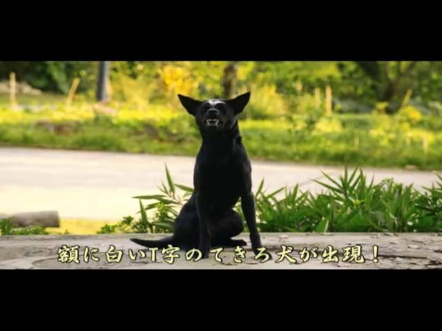 映画『人間万事塞翁が犬』予告編