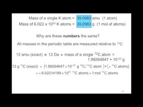 2 4 Atomic Weights