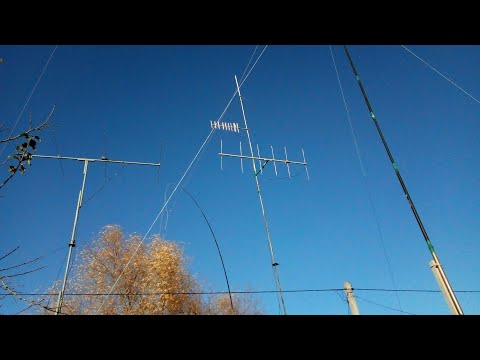 The Eggbeater Antenna | FunnyCat TV