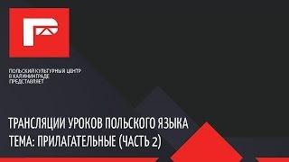 Урок польского языка (прилагательные 2 часть)