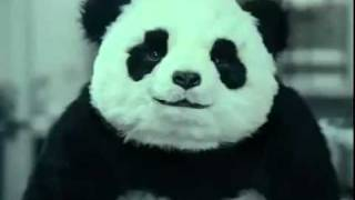 "Never Say No To Panda "" Panda Cheese Commercial "" - دعاية جبنة باندا"