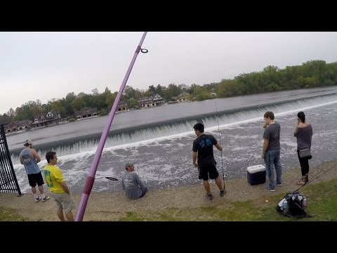 VLOG: Bassin And Chilling On The Mighty Skuke Ft. 1Rod1Reel & Sea-Money (Philadelphia, PA)