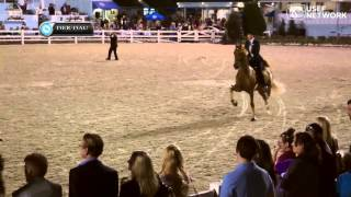 Five-Gaited Amateur Stakes at 2014 Devon Horse Show