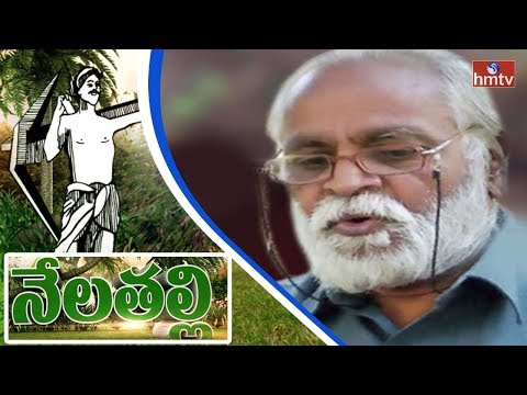 Success Story of a Farmer in Zero Budget Organic Farming in Crop Cultivation | Nela Talli | HMTV