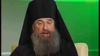 Беседы с батюшкой. Повседневная жизнь православного христианина. Эфир от 16 января 2017г